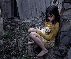 БРОШЕННЫЕ автор фото Тимофеев В П
