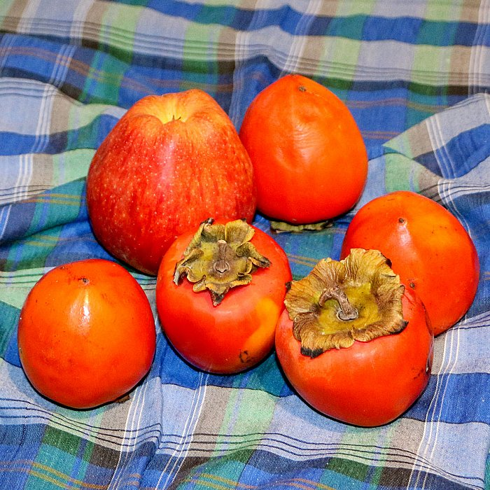 Still lifes with persimmon 2 ~ andrewdyachkin