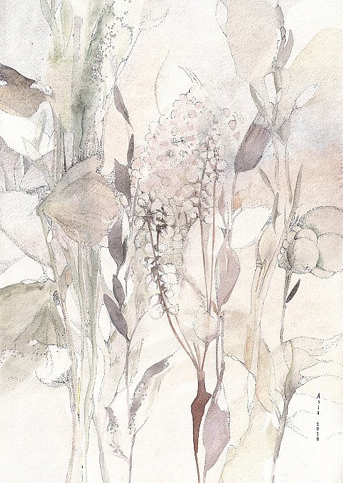 Dried flowers ~ Asia Bagaeva