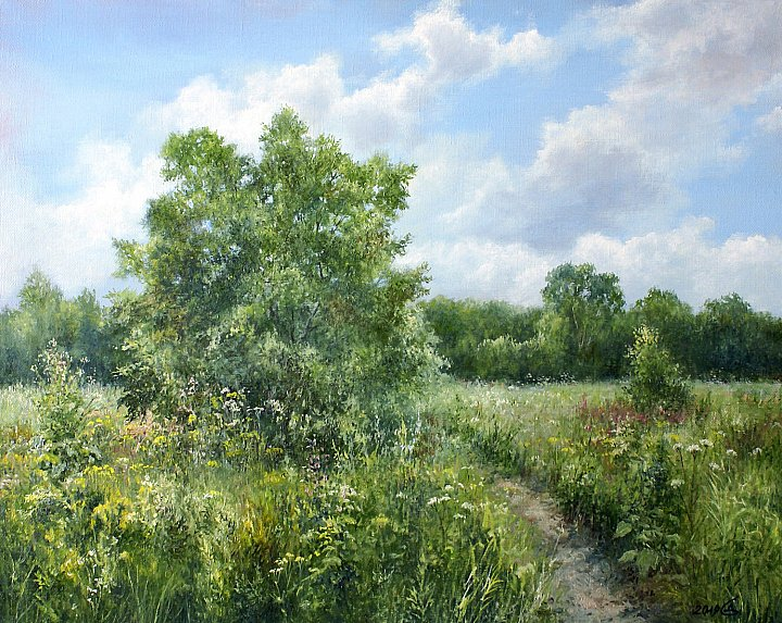 Сергей Дорофеев – Луговые травы