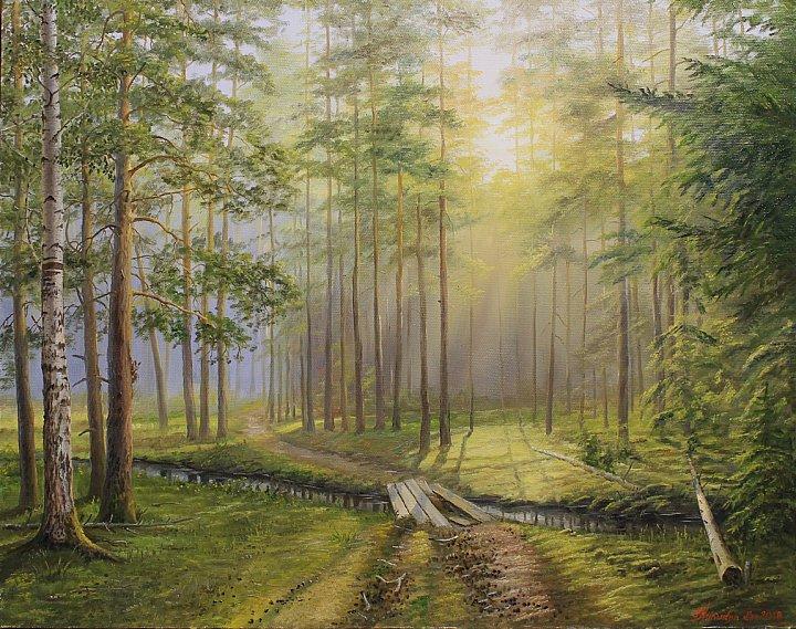 Утро. Тропа в сосновом лесу