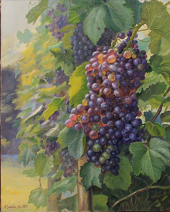 Владимир куликов – Виноградная гроздь