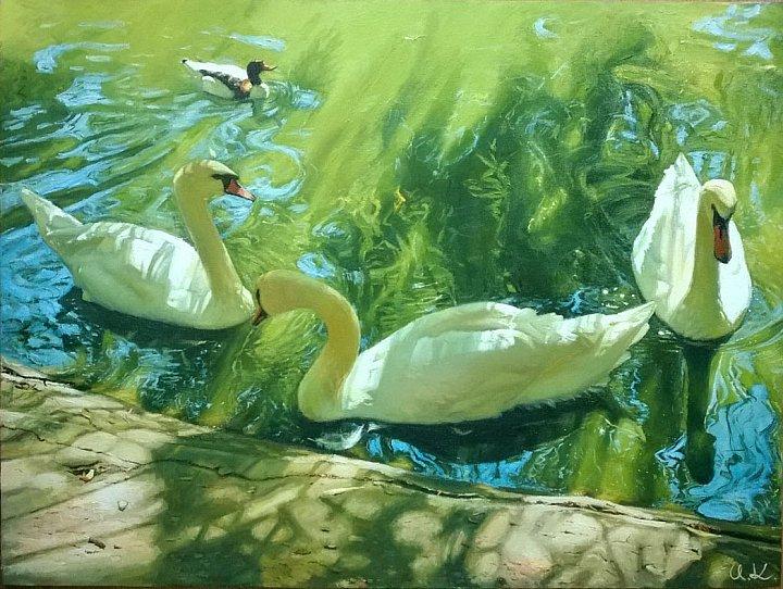Лебединая история