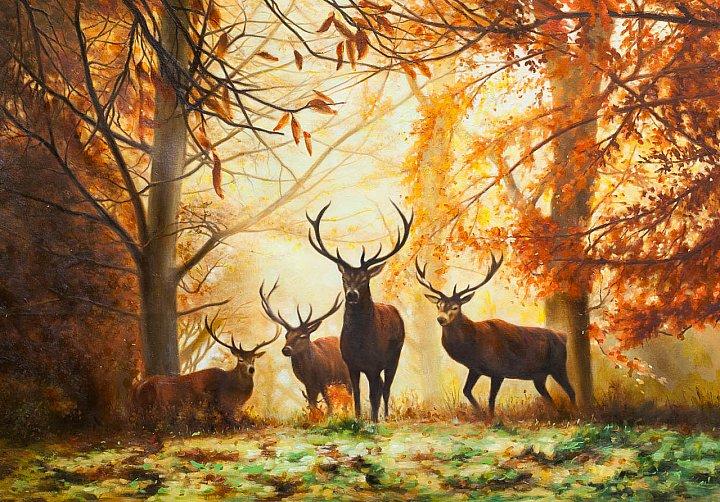 Осенью на оленьей тропе