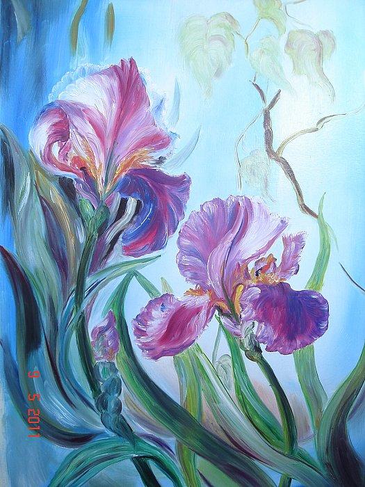 Kartiny maslom cvety irisy v r