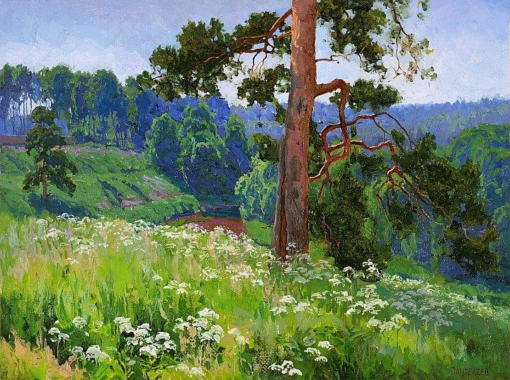 Сергей Пантелеев – Сныть цветёт