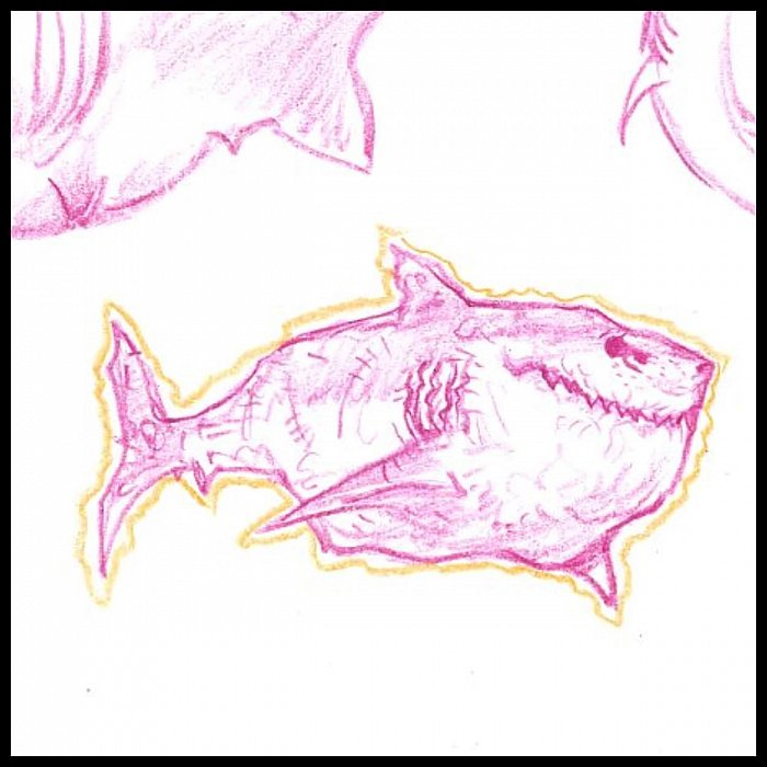 Shark Character Sketch