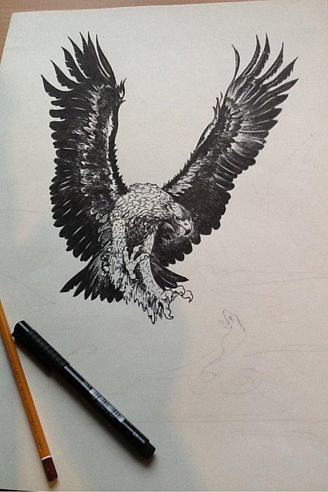Эскизы татуировки орёл Рисунки тату
