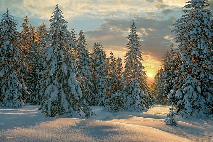 Валерий Ниминущий – Морозный вечер