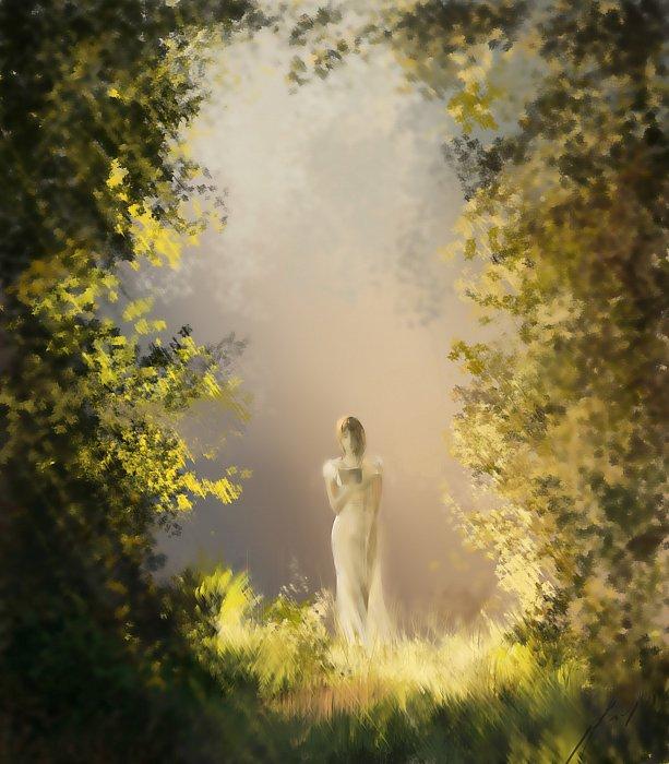 Владимир – Лирика лесной феи